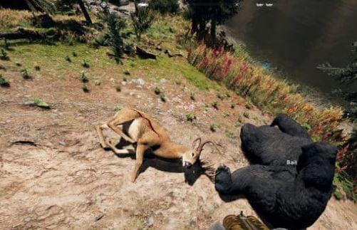 Como Obter Isca para a Caça em Far Cry 5